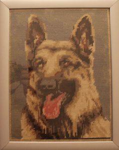 Testa di cane lupo