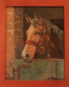 Testa di un cavallo